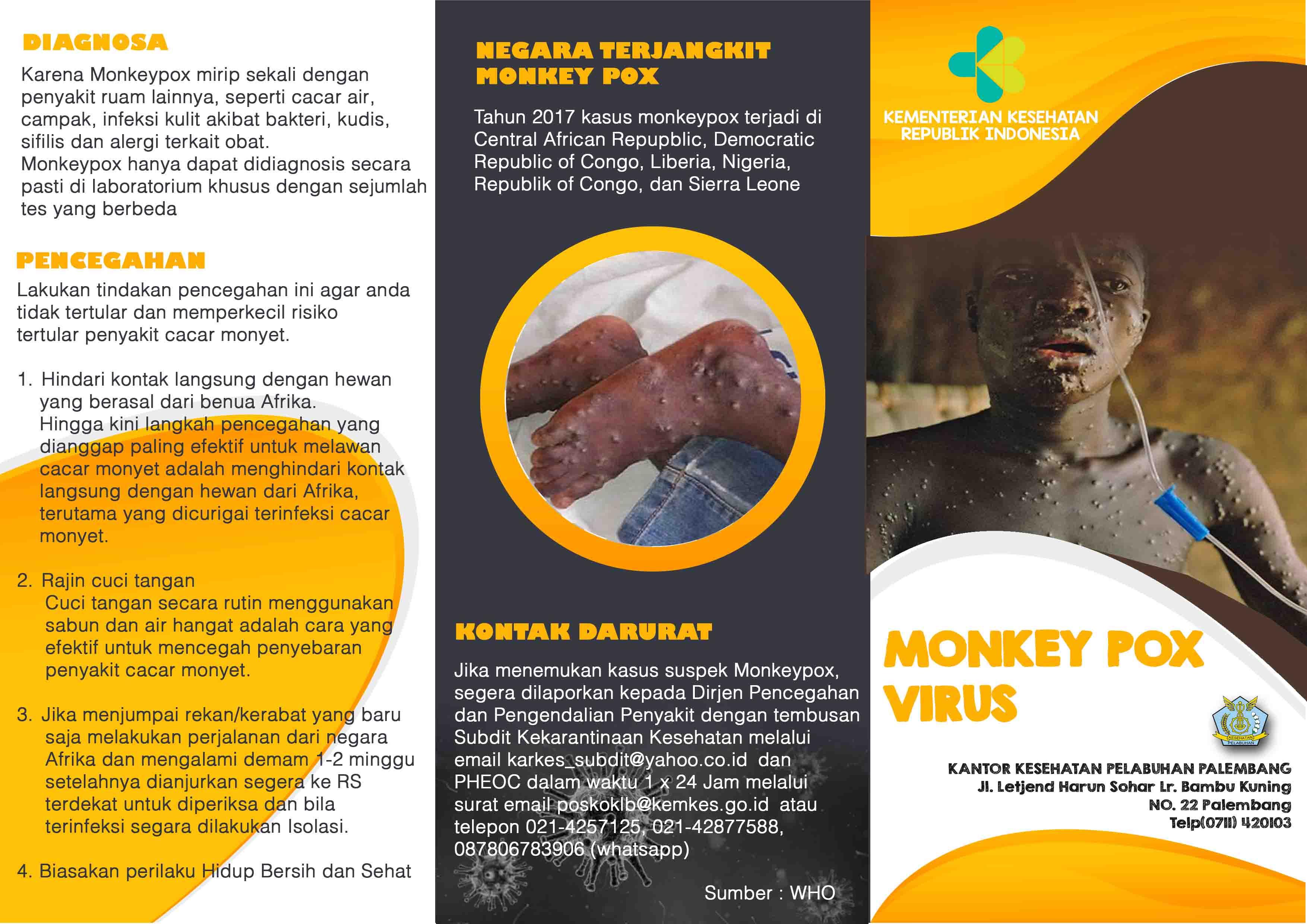 Kewaspadaan Importasi Penyakit Monkeypox